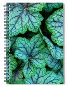 To The Edge Spiral Notebook