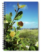 To The Sky Gp Spiral Notebook