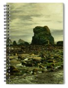 To Walk Alone Along Rocky Shores Spiral Notebook