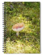 Toadstool Grows On A Forest Floor. Spiral Notebook