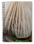 Toadstool Spiral Notebook