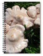 Toadstools Spiral Notebook