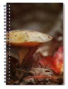 Toasty Glow Spiral Notebook