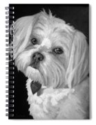 Toby Spiral Notebook
