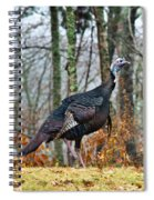 Tom Turkey Early Moning 1 Spiral Notebook