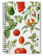 Tomatoes And Related Vegetables Spiral Notebook