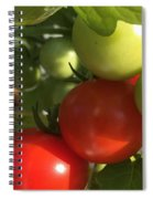 Tomatoes Spiral Notebook