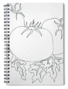 Tomatoes On A Vine In One Line Spiral Notebook
