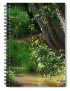 Toms Creek In Late Summer Spiral Notebook