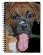 Tongue Lasher Spiral Notebook