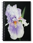 Tonto Basin Iris Spiral Notebook