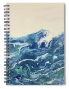 Too Blue Spiral Notebook