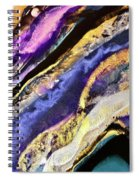 Too Cool Spiral Notebook