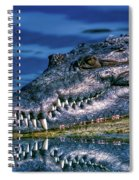Toothy Grin Spiral Notebook