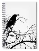 Top Bird Spiral Notebook