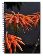 Top Of Aloe Vera Spiral Notebook