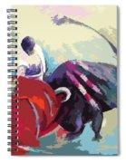 Toroscape 33 Spiral Notebook