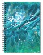 Torrent Spiral Notebook