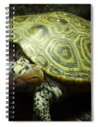 Turtle With A Tale To Tell Spiral Notebook