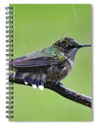 Totally Wet But Beautiful - Ruby-throated Hummingbird Spiral Notebook