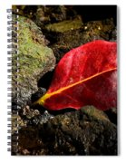 Touch Of Red Spiral Notebook