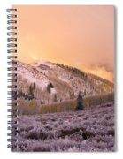Touch Of Winter Spiral Notebook