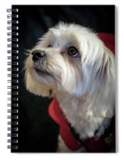Toutou 5 Spiral Notebook
