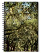 Towering Canopy Spiral Notebook