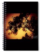 Towering Trees In The Twilight Spiral Notebook