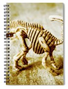 Toys And Artefacts Spiral Notebook