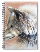Trace IIi Spiral Notebook