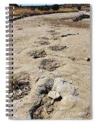 Tracks In The Desert 6 Spiral Notebook