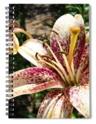 Traditional Art Lily Flowers Floral Garden Baslee Troutman Spiral Notebook