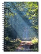Trail In Morning Light Spiral Notebook