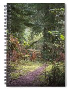 Trail In The Forest Spiral Notebook