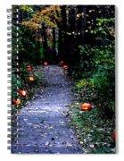 Trail Of 100 Jack-o-lanterns Spiral Notebook