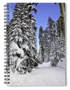 Trail Through Trees Spiral Notebook