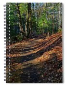 Train On The Adirondack Log Keene Valley Ny New York Spiral Notebook