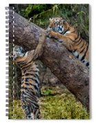 Training Session Spiral Notebook