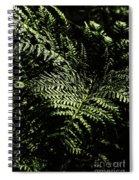 Tranquil Botanical Ferns Spiral Notebook