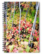 Tranquil Days Of Autumn Spiral Notebook