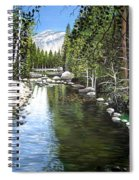 Tranquil Forest Spiral Notebook