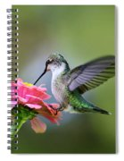 Tranquil Joy Spiral Notebook