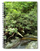 Tranquil Mountain Laurel Stream In The Great Smoky Mountains National Park Spiral Notebook