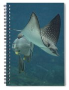 Tranquil Sea Creatures Spiral Notebook