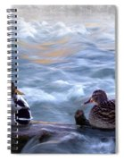Tranquility On The River Of Life Spiral Notebook