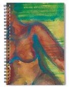 Transitions Spiral Notebook