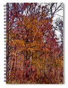 Transitions - Painterly Spiral Notebook