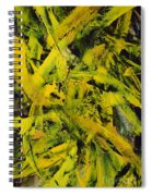 Transitions Vi Spiral Notebook