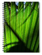 Translucent Green Spiral Notebook